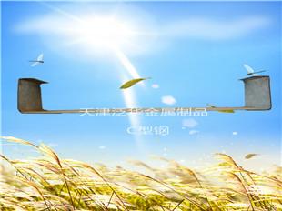 天津泛华金属制品C型钢C型钢檩条价格