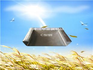 专业长期供应C型钢檩条厂家